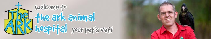 Welcome to The Ark Animal Hospital - Your Pet's Vet